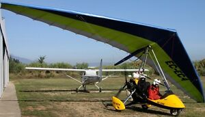 Details about Blade 503 Flying Wing Mainair Ultralight Trike Mahogany Wood  Model Large New