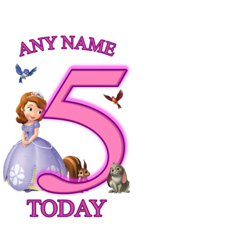 SOFIA THE FIRST BIRTHDAY AGE A5 IRON ON TRANSFER FOR WHITE//LIGHT COTTON