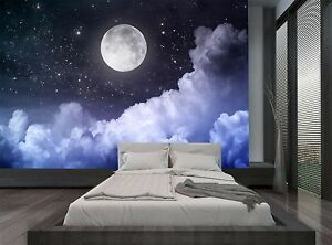 Image Is Loading Night Sky Moon Dark Clouds Stars Wall Mural  Part 83