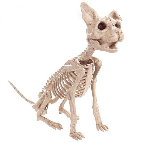 Halloween Decoration Props Animals Skeleton Mouse Dog Cat Skull Bone Ornament