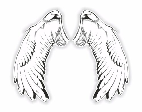 Wings Vinyl Sticker Hard Hat Motorcycle Gas Tank or Car Decal #12