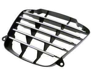 Fairing-Grill-Grille-for-Piaggio-MP3-125-06-08