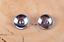 10PC-30MM-FLORAL-TURQUOISE-ANTIQUE-SLIVER-SCREW-BACK-CONCHOS-FOR-BELT-WALLET miniature 9