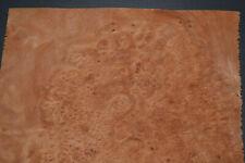 Planetree Burl Raw Wood Veneer Sheets 10 X 11 Inches 142nd 7368 29