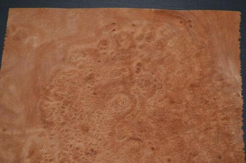 Planetree Burl Raw Wood Veneer Sheets 10 x 11 inches 1//42nd              7368-29