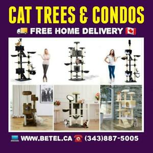 Best Cat Trees Condo Scratching  Posts & Activity Centre Collection From $49 Canada Preview