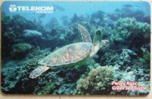 Malaysia-Used-Phone-Cards-Green-Sea-Turtle