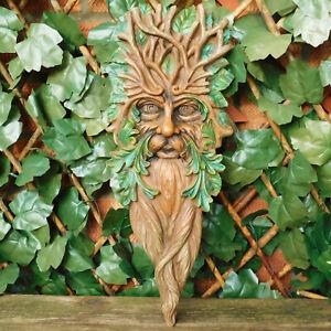Largo-Alto-Marron-Barbudo-Verde-Hombre-Placa-Exterior-Jardin-Pared-Arte-Deco
