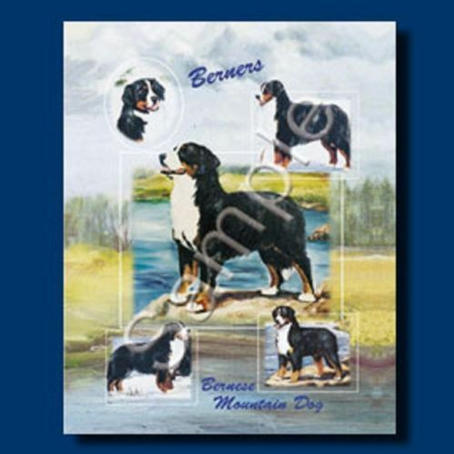"""11/"""" x 9/"""" BERNESE MOUNTAIN DOG Large Full Color Gift Bag w//matching Gift Tag"""