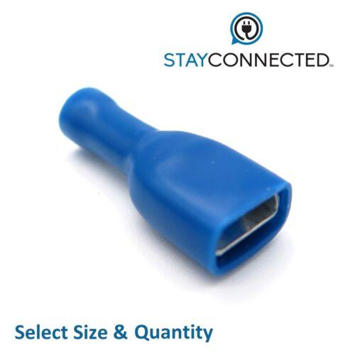 Blue Completamente Aislado Conector Hembra de horquilla terminales crimp connectors** ** Reino Unido