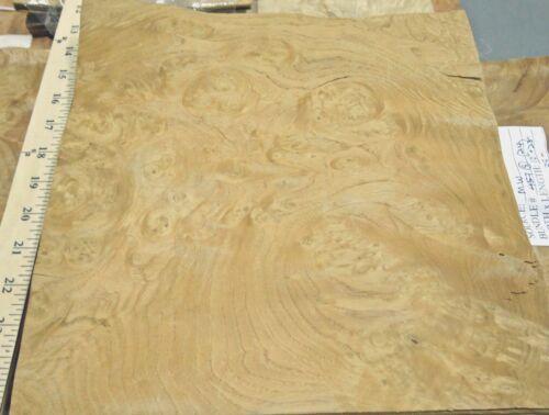 Chestnut Burl wood veneer 11