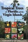 Tropical Trees of Florida and the Virgin Islands: A Guide to Identification, Characteristics and Uses by T Kent Kirk (Paperback / softback, 2009)