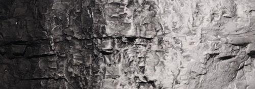 Woodland Scenics wc1220 paysagistes Couleur Noir
