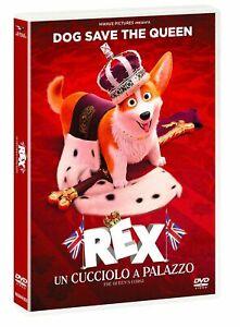 Rex-Un-Cucciolo-A-Palazzo-DVD-sigillato-EDITORIALE