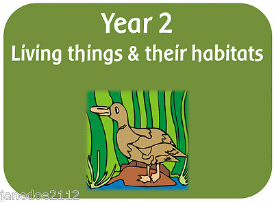 Image result for living things and their habitats year 2