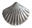 Scallop Shell Pin Badge Made in Polished English Pewter