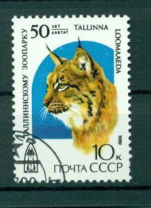 Russie-USSR-1989-Michel-n-5977-50-annees-Parc-zoologique-de-Tallinn
