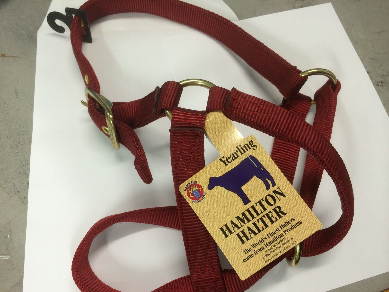 Hamilton Yearling 1  Turn Out Halter in Red 30DY RD 8322H005 Brand New