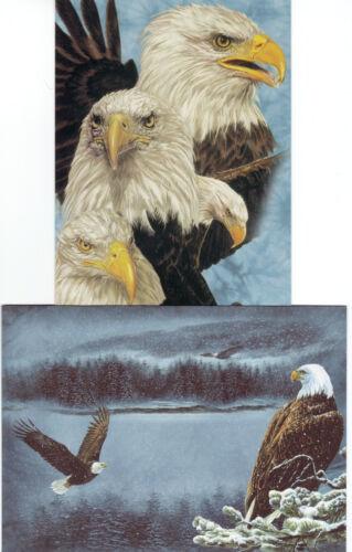 Tree Free Greetings Postcard Eagle Motif incl Letter Envelope No 16