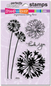 Agapanthus-Thanks-Flower-Clear-Acrylic-Stamp-Set-by-Stampendous-Stamps-SSC1111