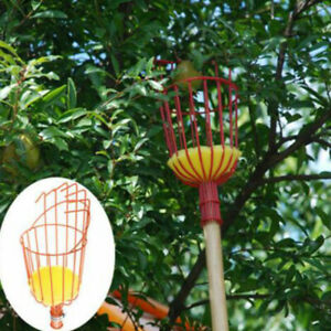Cueille-fruits-panier-TREE-FRUITS-cueillette-recolte-outil-jardinage-fournitures-metal
