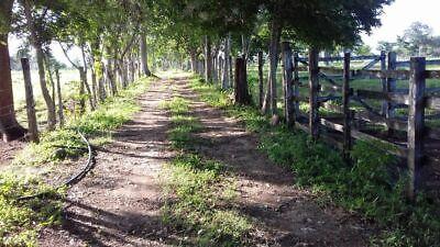 Rancho 140 Hectáreas. Escárcega Campeche