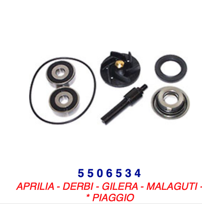 5506534 Kit Revisione Pompa Acqua Aprilia Sport City 200 Eu3 06-08