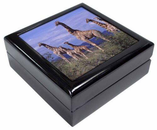 AG-23JB Giraffes Keepsake//Jewellery Box Christmas Gift