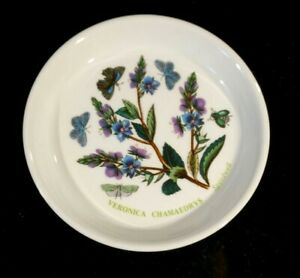 Beautiful-Portmeirion-Botanic-Garden-Speedwell-Coaster