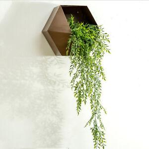 Tillandsia-Air-Plants-Holder-Hanging-Flowers-Rack-Pot-for-Wedding-Brown-30cm