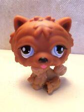 Littlest Pet Shop #1831 Brown Chow Chow Puppy Dog w/ Blue Eyes - USA seller