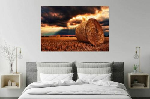 HAY STACK AGRICULTURE HARVESTED FEILD art High quality Canvas print choose size