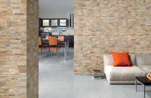 Piastrelle gres rivestimento parete muro interno esterno pietra