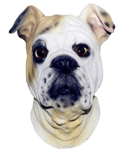 Masque de Bulldog Chien Latex frais généraux britanniques ROBE FANTAISIE ANIMAUX canine Halloween