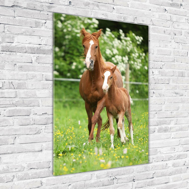Wand-Bild Kunstdruck aus Acryl-Glas Hochformat 70x100 Stute Fohlen