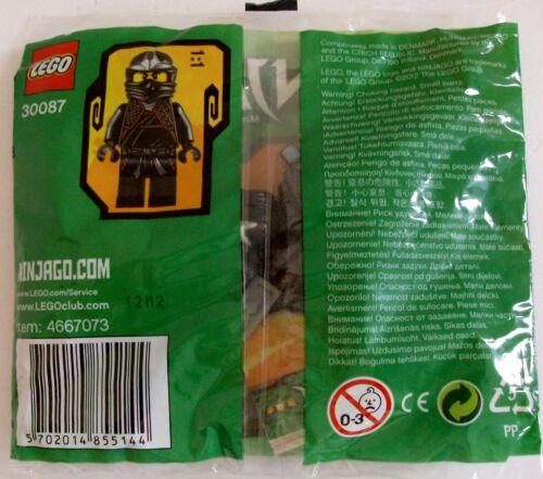 Lego 30087 ninjaga Masters of Spinjitzu Promo Sac