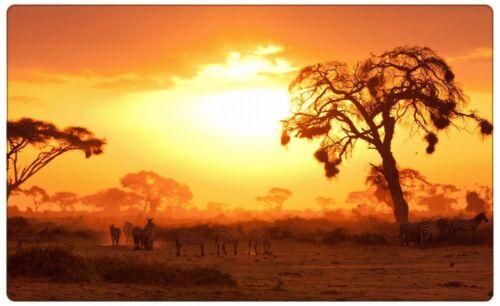 Zebra Safari Savanne Afrika Wandtattoo Wandsticker Wandaufkleber R0700