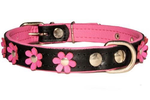 Real De Cuero Suave Perro Collar De Perro Daisy Flor Diseñador Color Acolchado Hecho A Mano
