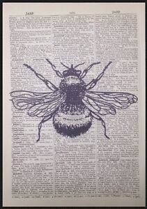 Vintage-Bumble-Bee-Print-Antique-Dictionary-Page-Wall-Art-Picture-Insect