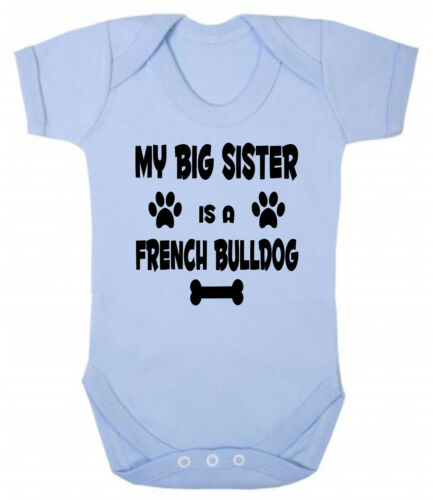 Is A French Bulldog Blue or Pink Cotton Baby Bodysuit or Sister My Big Brother