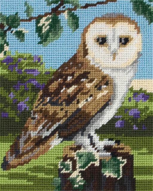Owl   :  Anchor  Tapestry  Kit : Starter : MR951