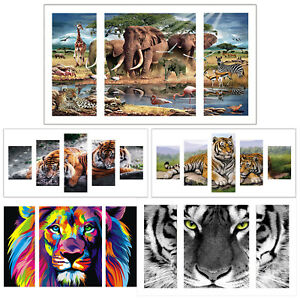 Full Drill Diamond Painting Kit Like Cross Stitch White Tigers in Woods ZY258E