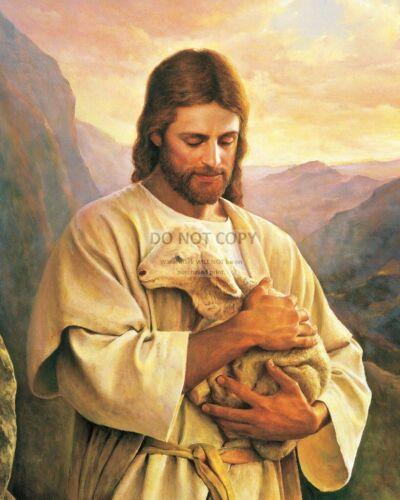JESUS CHRIST HOLDING A BABY LAMB ILLUSTRATION 8X10 PHOTO CP008