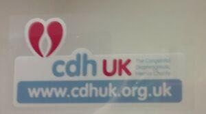 CDH-UK-Charity-Awarness-Car-Window-Sticker