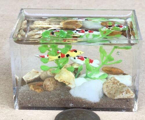 1:12 SCALA Carpa Koi in un grande Acquario Vasca dei Pesci tumdee casa delle bambole Pet LC