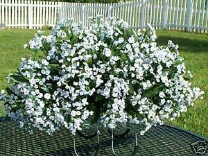Doublewide-length-White-Babys-Breath-Tombstone-Saddle-Arrangement-2-urn-Flowers