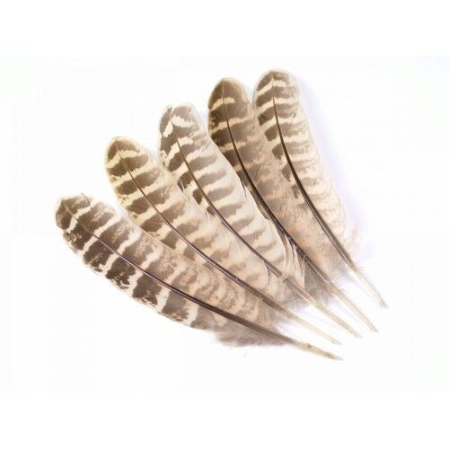For Making Fishing Flies Hen Pheasant Wing Quills Fly Tying Feathers Feathers