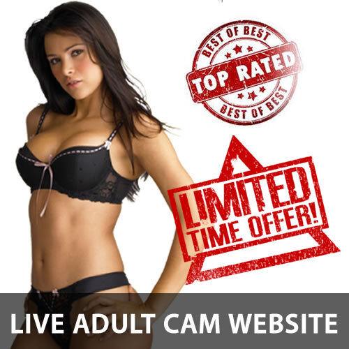 RARE Full Functional LIVE CAMGIRL Website Business 4 sale - Hundreds of Models! 2