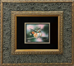 Original-Pastel-Painting-Rufous-Hummingbird-by-Pastel-Artist-Roby-Baer-PSA
