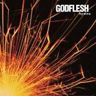 Hymns by Godflesh (Vinyl, Mar-2013, Music on Vinyl)